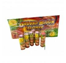 GROUND BLOM FLOWER 6ks